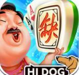 台州哈狗3缺1