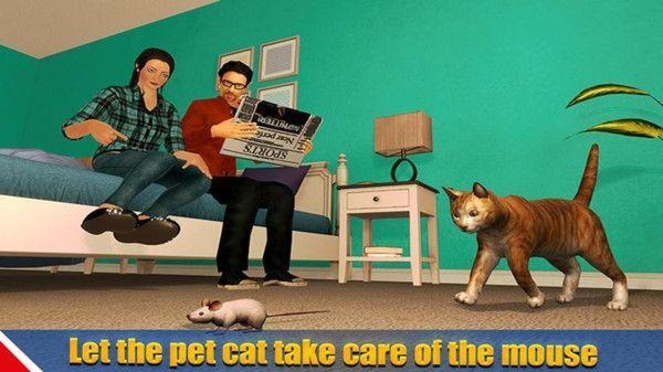 宠物猫狗之家