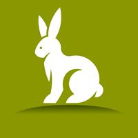 养兔子赚钱