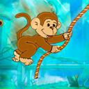 調皮小猴子