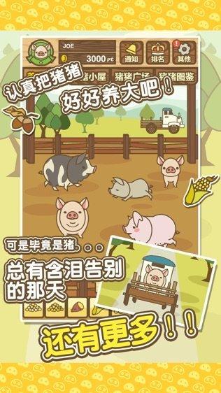旺旺养猪场红包版游戏截图