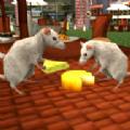 流浪的老鼠