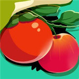 找番茄苹果版