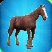 我的马模拟器