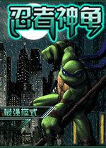 忍者神龟双人版