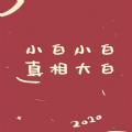 2020新年姓氏壁纸
