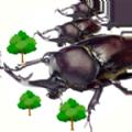 进击的甲虫