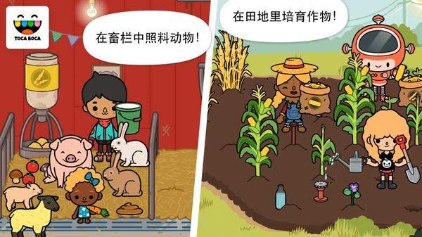 爱乐彩,托卡生活农场介绍