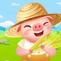 金币养猪场