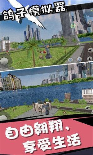 鸽子模拟器2020
