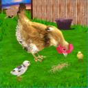 母鸡模拟器