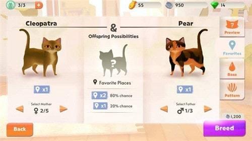 我的猫咪俱乐部手游安卓版下载-我的猫咪俱乐部游戏中文版下载