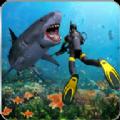 狩猎食人鲨