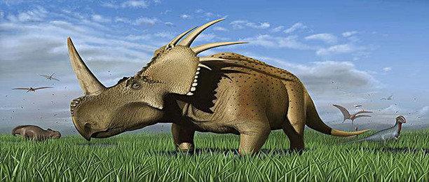 恐龙世界游乐园