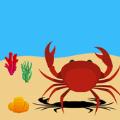 螃蟹海滩生存