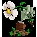 植物大战僵尸95免费版
