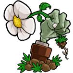 植物大战僵尸花园战争安卓版