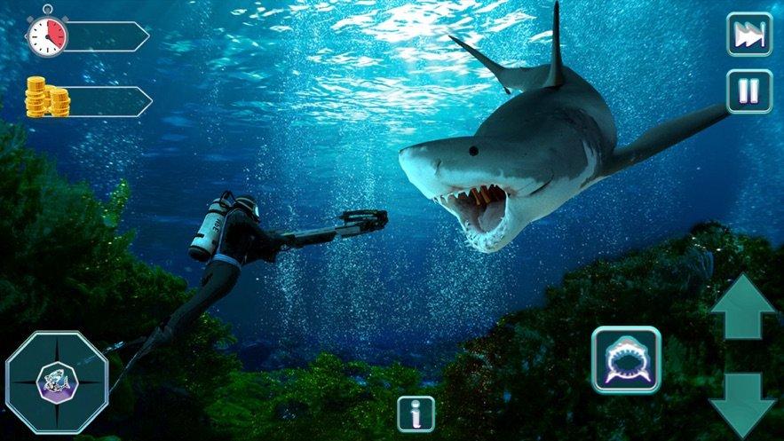 我饥饿的生存鲨鱼