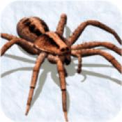 打蜘蛛模拟器手机版