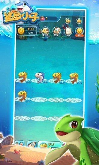 鲨鱼小子赚钱版领红包游戏下载-鲨鱼小子红包版可提现游戏下载