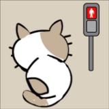 小猫迷路逃脱