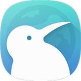 kiwi浏览器