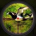 鸭子狩猎2021