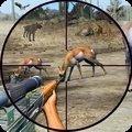 野生动物狩猎2020