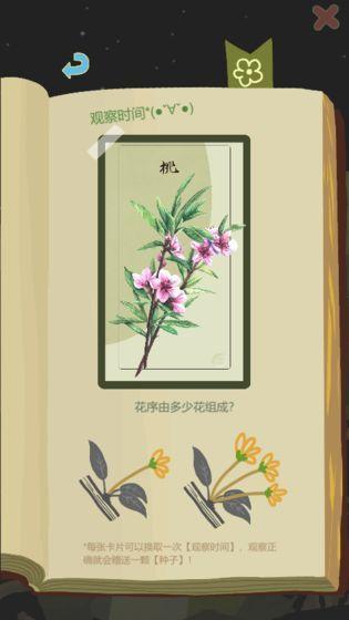 老农种树介绍
