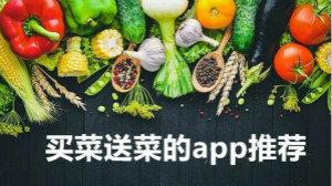 买菜送菜的app