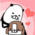 熊貓與狗無論何地狗狗都可愛