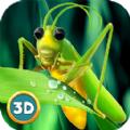 印度蝗虫模拟器
