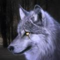 狼模擬器3D的野生動物