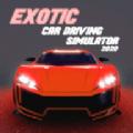异国情调汽车驾驶模拟器2020