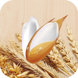 一碗胚芽米