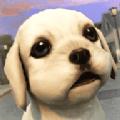 家養小狗模擬