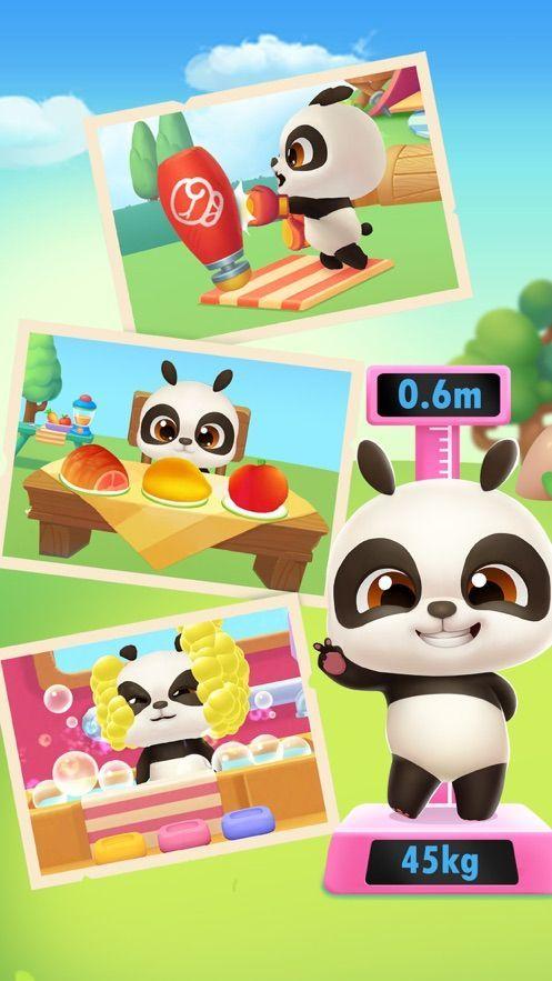 我的熊猫盼盼介绍