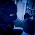 职业小偷模拟器抢劫3D