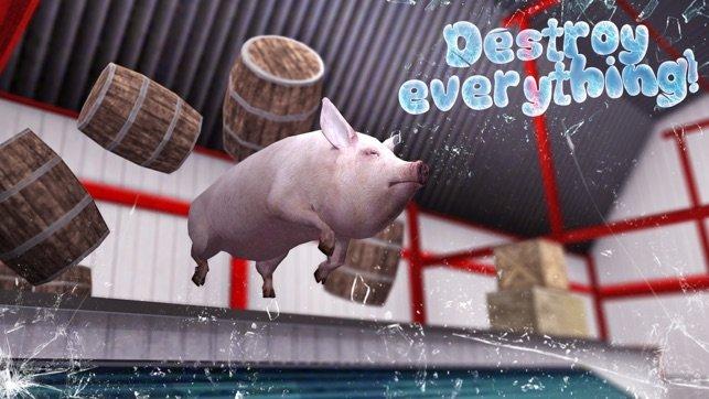 豬的一生模擬器
