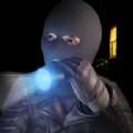 行走盗贼模拟器