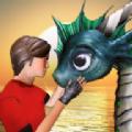 驯龙模拟器