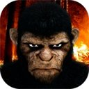 猩猩刺客2森林忍者