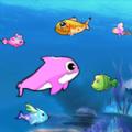 大魚吃小魚大作戰
