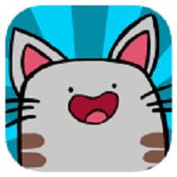 Focus Cat