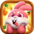 迷路的兔子想吃萝卜