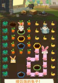 小火兔農場養殖