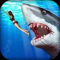鲨鱼猎人3D