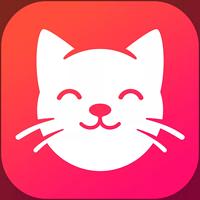 养猫联盟app