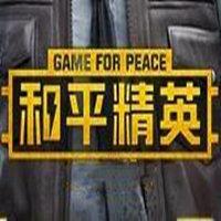 和平精英至尊透视辅助