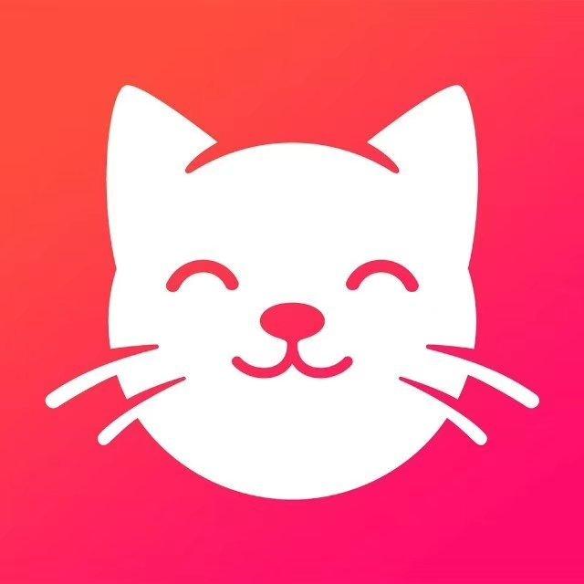 养猫联盟分红